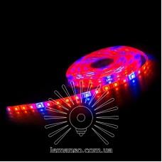 Св/фитолента LEMANSO IP65 5м 60SMD 5050 12V 12W/м 18LM/LED / LM870 (4*красн. 1*синий)