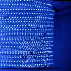 Дюралайт-лента LEMANSO 120LED IP65 синяя 230V 10W/м 720LM / LM847