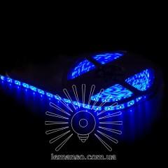 Св/лента LEMANSO IP65 5m 60SMD 2835 12V синяя 5W/м 360LM / LM589