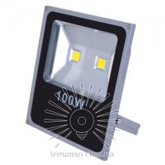 Прожектор LED 100w 6500K IP65 6500LM LEMANSO 2LED серый / LMP2-100