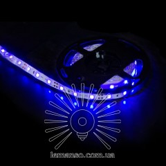 Св/лента LEMANSO IP20 5m 60SMD 12V синий 5W/м 6LM/led (цена за 1м) / LM587